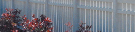 Custom Border Fence