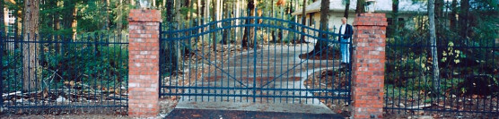 Ornamental Iron Arched Gate